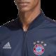adidas Bayern München Anthem Jacket 2018/19